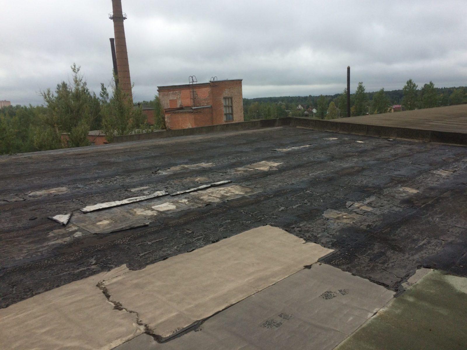 Частичный ремонт основания кровли для производственной организации ООО «Квадро Декор» в г. Никольское